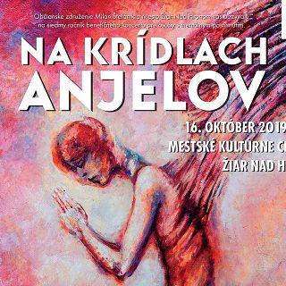 We helped the Na krídlach anjelov 2019 benefit concert