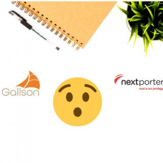Introduction to the Gallson Group